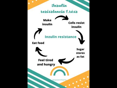 Inzulin rezisztencia 1 rész
